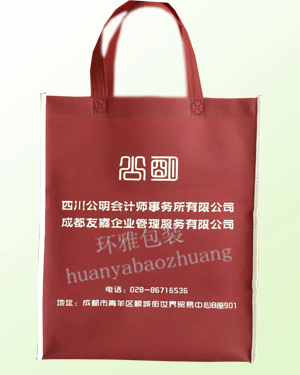 会计师事务所环保宣传袋定制 可丝印LOGO免费设计
