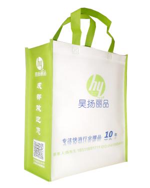 环雅包装九年专业生产竖式无纺布袋—昊扬丽品 款式齐全 质量保证
