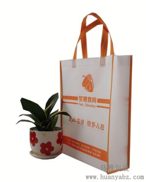 坚果教育无纺布宣传袋  可重复使用 广告宣传效果持久
