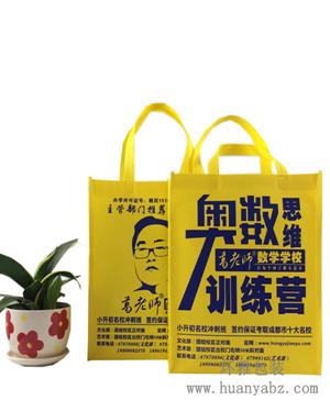 成都培训学校宣传手提袋定制 环雅环保袋厂家一站式生产